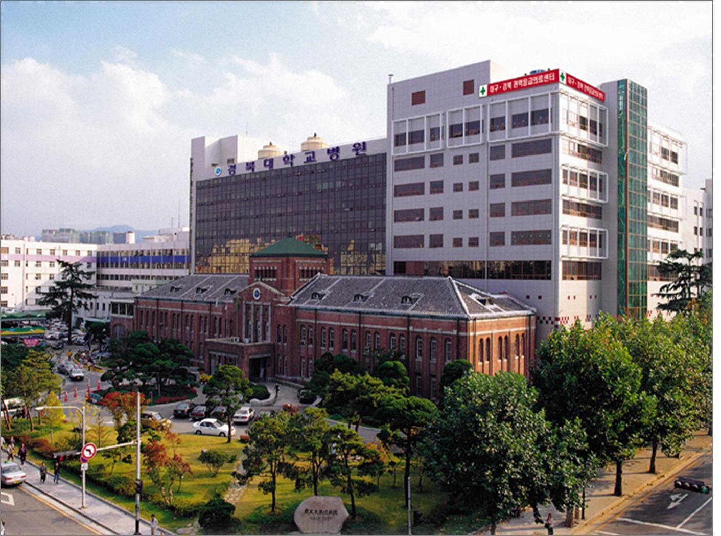경북대학교병원.jpg